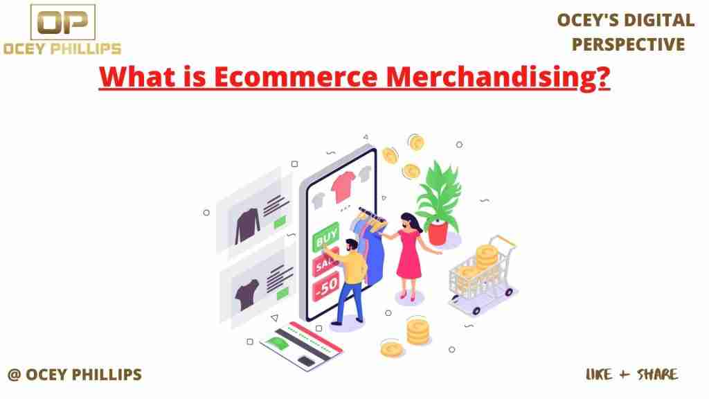 Ecommerce Merchandising| 10 steps to success